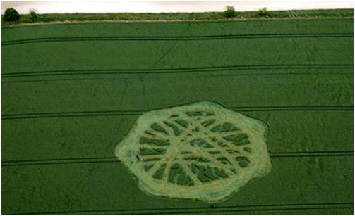 CCRF Supports the Crop Circle Access Pass!